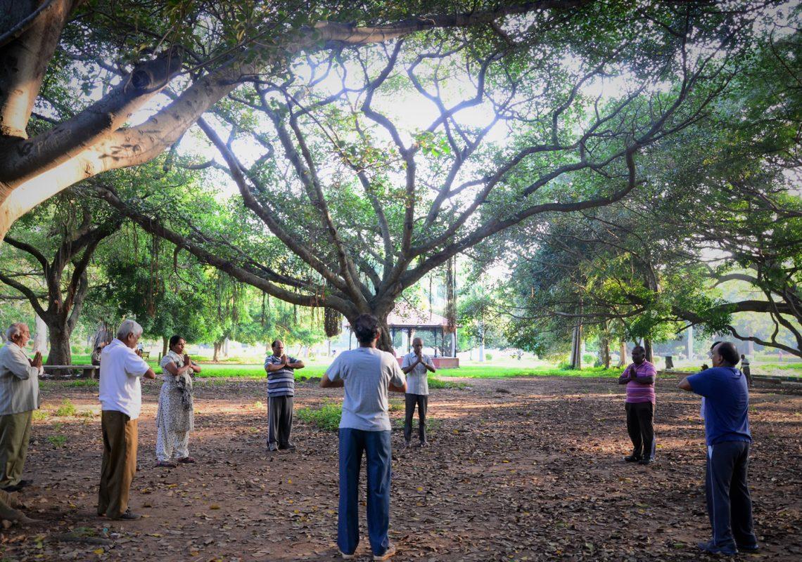 Yoga in lalbagh botanical gardens